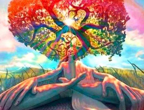 El Árbol de la vida…despertando la conciencia